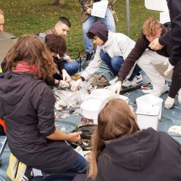 SchülerInnen sammeln Müll im Stadthafen